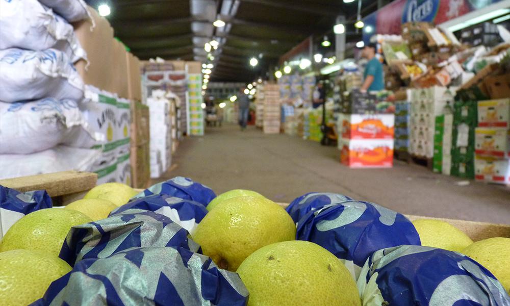 63c661b359a8 ¿Cuántas frutas y verduras descarta el Mercado Central por presencia de  agroquímicos